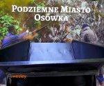 Osowka